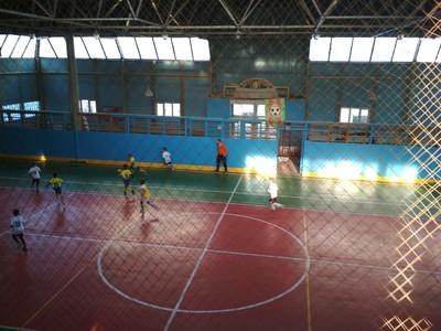 Першість міста Гола Пристань з футзалу серед команд юнаків 2009/2010 років народження (U-9)